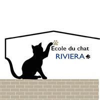 Ecole du Chat Riviera et Flows Communication